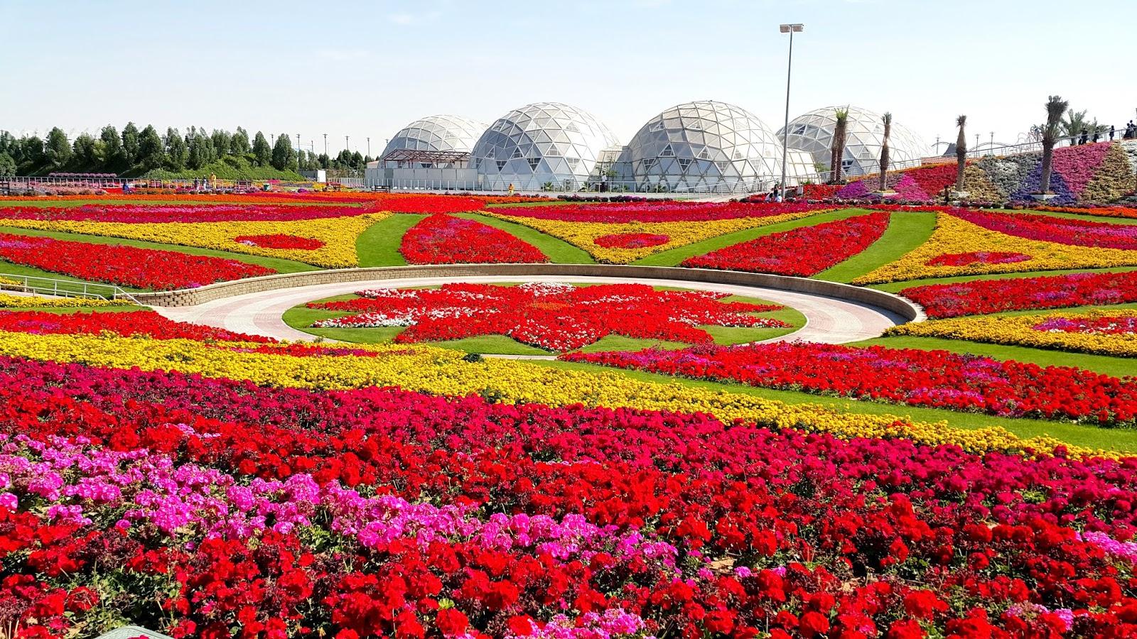 skypark holidays-United Arab Emirates